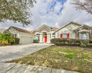 4207 Winding Vine Court, Brandon image