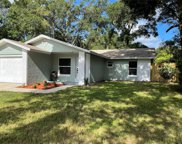 620 W Tall Pine Terrace, Deland image
