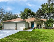 1139 Lumsden Trace Circle, Valrico image