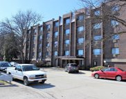 4624 North Commons Drive Unit 307, Chicago image