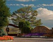 7363 Preservation Trail, Parker image