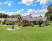 10358 Down Lakeview Circle, Windermere image