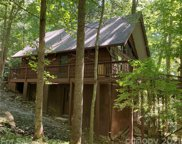 72 Woodhaven  Road, Asheville image