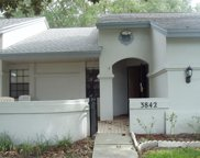 3842 Goldfinch Court, Palm Harbor image
