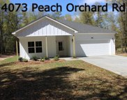 4073 Peach Orchard Road, Hephzibah image