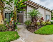 1810 Cypress Trace Drive, Safety Harbor image