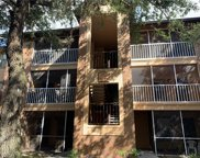 957 Salt Pond Place Unit 304, Altamonte Springs image