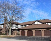6370 West Orchard Drive Unit G2, Palos Heights image