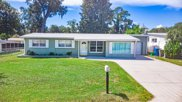 1159 Oakview Drive, Holly Hill image