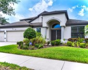 11932 Harpswell Drive, Riverview image