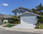 13 Marsh Hawk, Irvine image