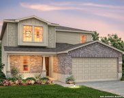 174 Texas Thistle, New Braunfels image