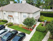 14033 Notreville Way, Tampa image