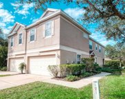 6222 Duck Key Court, Tampa image