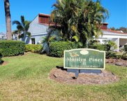 2060 Marilyn Street Unit 231, Clearwater image