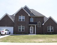 1009 S Azalea Ct, Pleasant View image