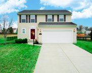 3856 Golden Meadow  Court, Batavia Twp image