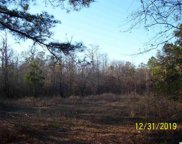 861 Rowe Pond Rd., Conway image