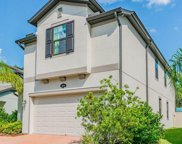 19338 Roseate Drive, Lutz image