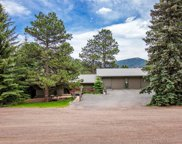 5002 S Syndt Road, Evergreen image