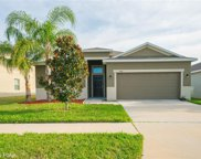 2439 Dovesong Trace Drive, Ruskin image