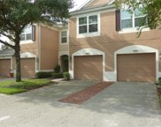 26650 Castleview Way, Wesley Chapel image