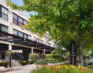1070 West 15Th Street Unit 358, Chicago image