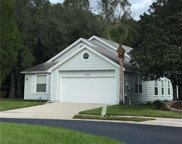5172 Sterling Manor Drive, Tampa image
