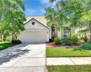 14512 Thornfield Court, Tampa image