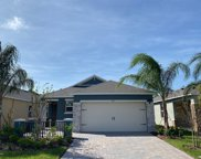 204 Caryota Court, New Smyrna Beach image