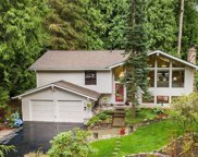 18818 197th Ave NE, Woodinville image