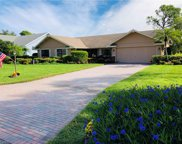 16584 Bear Cub  Court, Fort Myers image