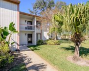 102 Lakeview Way Unit 102, Oldsmar image