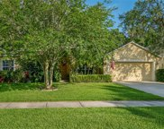 2544 Brookforest Drive, Wesley Chapel image