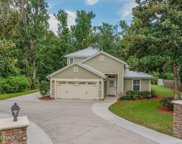1440 FRUIT COVE RD S, Fruit Cove image