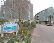 1101 Possum Trot Rd. Unit A-201, North Myrtle Beach image