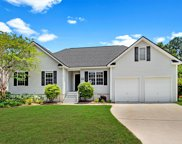 121 Sea Cotton Circle, Charleston image