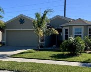 2604 Star Coral Lane, New Smyrna Beach image