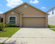 11116 Summer Star Drive, Riverview image