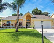 4795 Klosterman Oaks Boulevard, Palm Harbor image