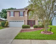 11709 Derbyshire Drive, Tampa image