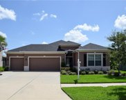 11316 Coventry Grove Circle, Lithia image