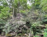 Lot 19 Spicewood St, Sevierville image