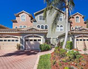 1802 Lago Vista Boulevard, Palm Harbor image