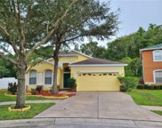 11204 Madison Park Drive, Tampa image