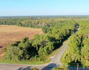 Berry Groves Road, Clermont image