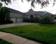 1036 Carriage Park Drive, Valrico image