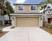 7103 Montauk Point Crossing, Bradenton image