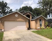 2507 Clareside Drive, Valrico image