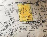 1319 Deerfield Drive, Wills Point image